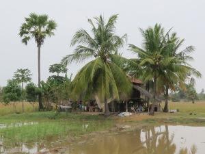 Doun Yoy village